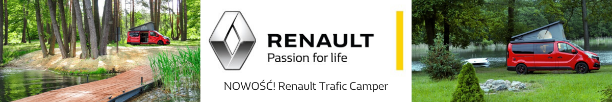 Renault - W5 (1)