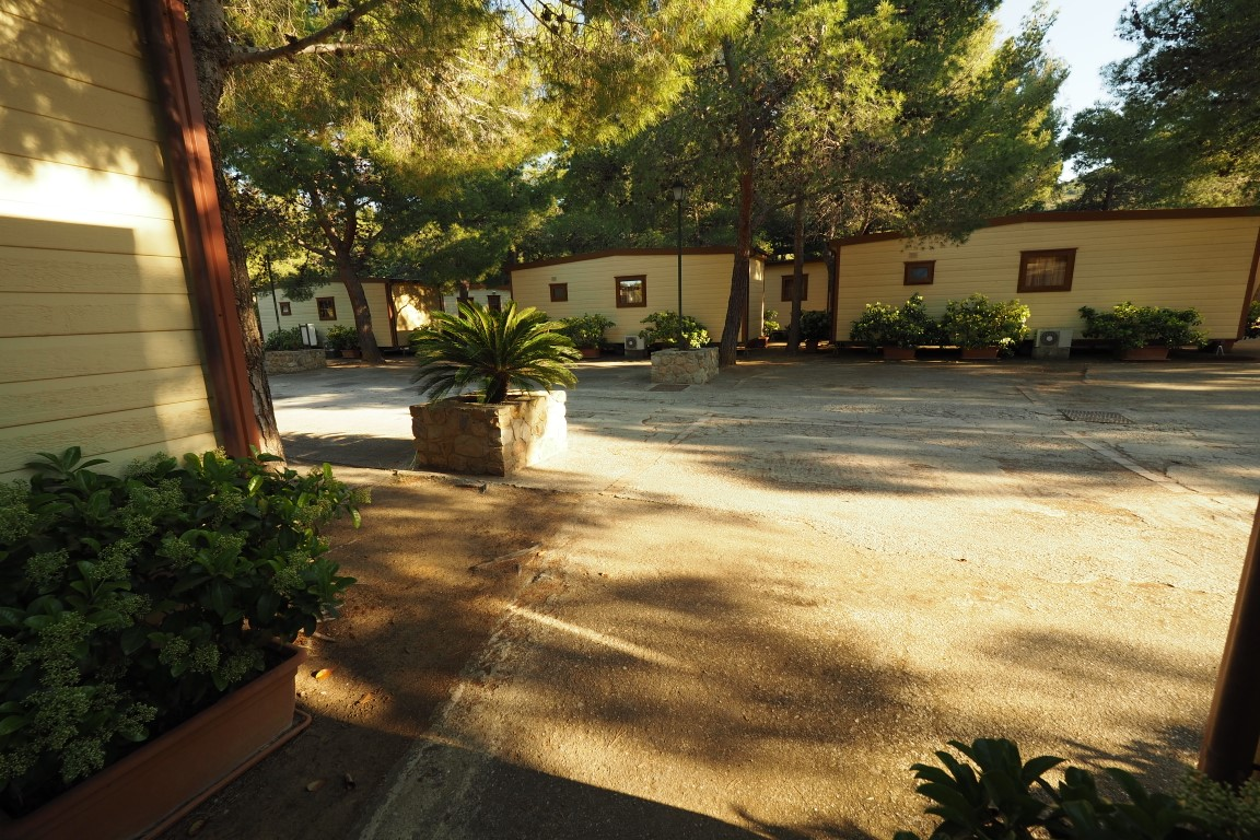 SPECIAL OCTOBER OFFER 14 NIGHTS IN MOBILE HOME